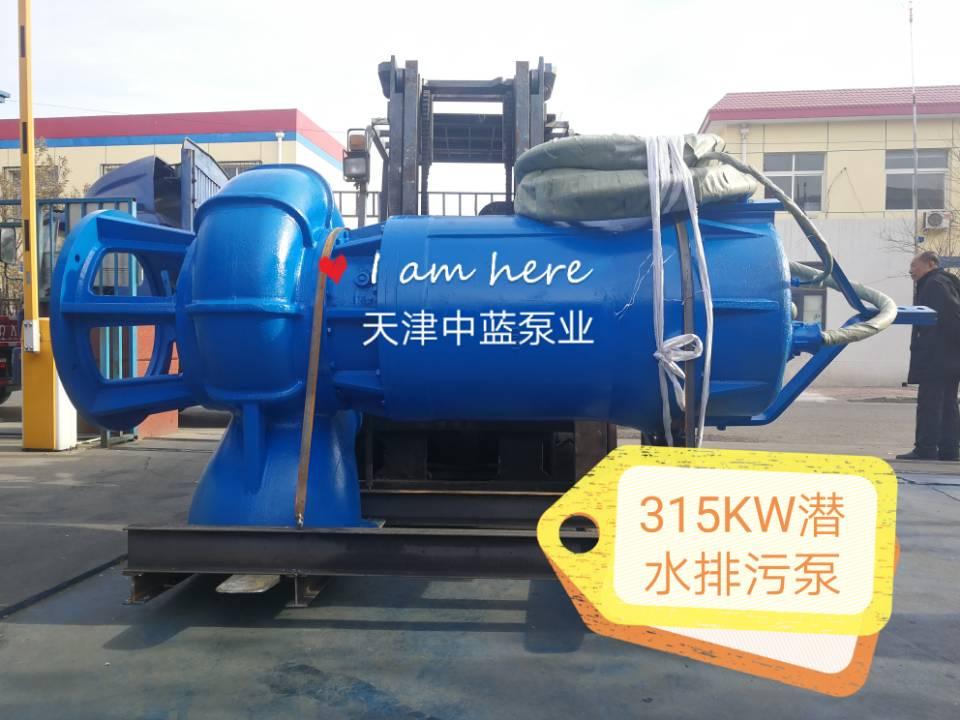 天津中蓝泵业——质量好的污水潜水泵提供商——污水潜水泵出售