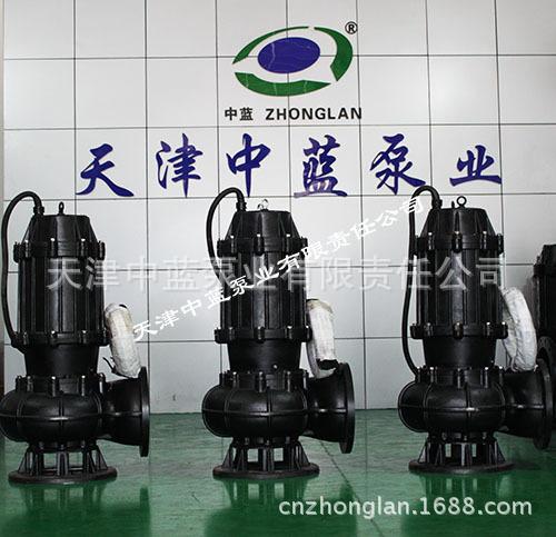 天津中蓝泵业供应上等污水潜水泵——环保的污水潜水泵