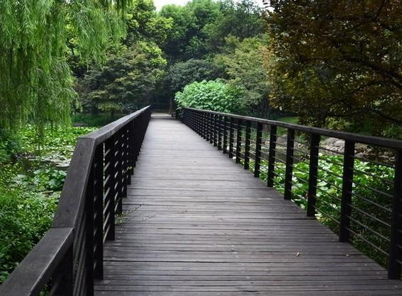 海南防腐木木板,【厂家直销】海口有品质的防腐木栈道