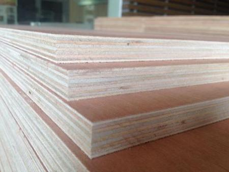 日照生态板_买专业的生态板优选森弘木业