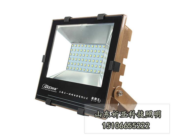 环保LED投光灯价格 外贸LED投光灯