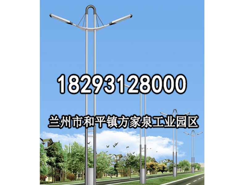 白银道路灯|品质道路灯供应批发