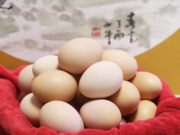 山鸡蛋批发价位-山东新品山鸡蛋供应