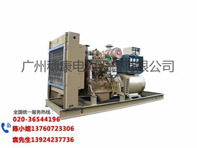广州哪里有供应价位合理的康明斯发电机组-康明斯柴油发电机组销售