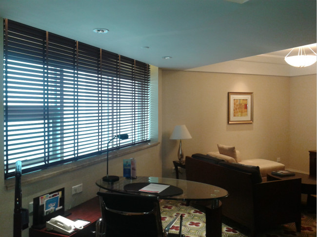 浙江電動卷閘窗定做_金適遮陽提供有品質的國朗絲簾