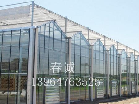 花卉智能温室建造/花卉连栋温室建设/小型温室大棚建造-春诚