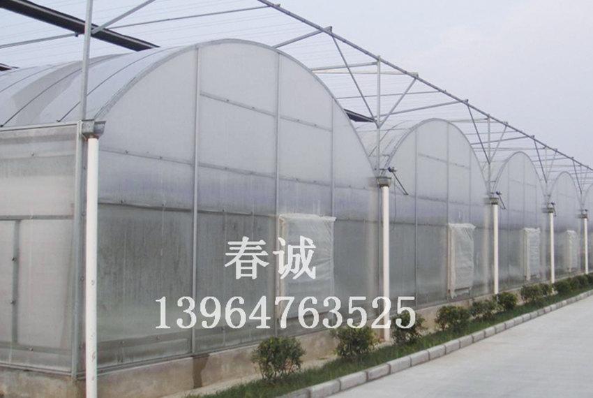 圆形温室建造/草莓采摘大棚建造/薄膜连栋温室造价@春诚