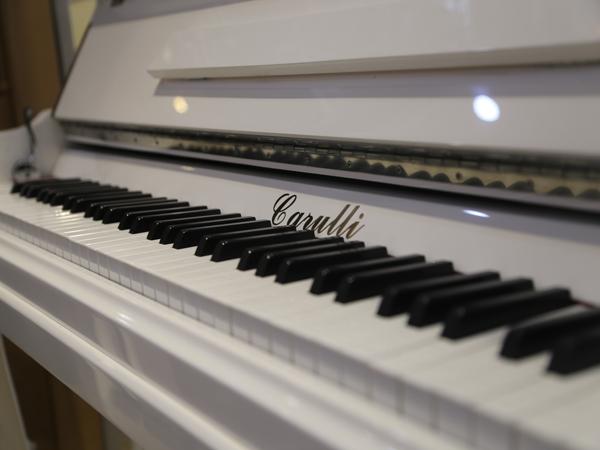 意大利卡鲁里钢琴厂家-临沂价格合理的钢琴供销