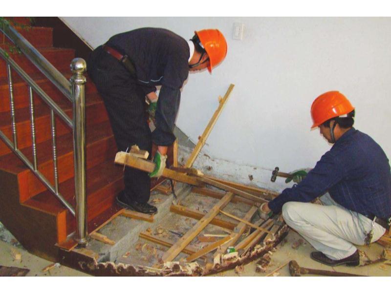 福州古建筑白蚁防治-嘉信白蚂蚁防治有保障的古建筑白蚁防治推荐
