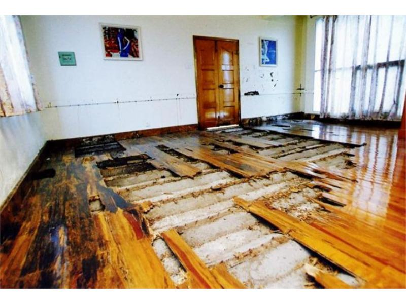 泉州古建筑白蚁防治专业承接-古建筑白蚁防治哪里有