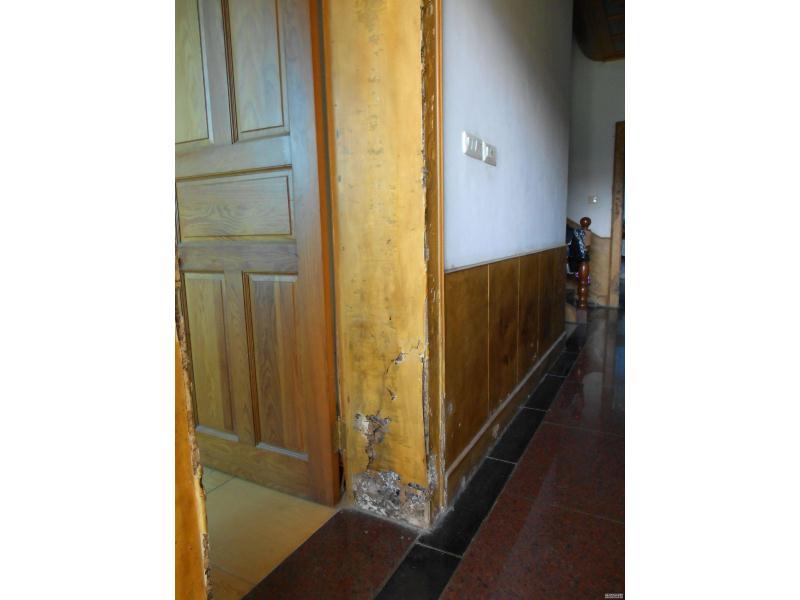 福建优质的别墅白蚁预防推荐-龙岩别墅白蚁预防