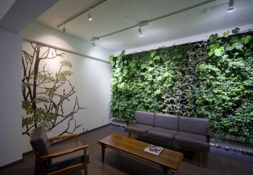 想买新品植物墙,就到重庆图拉园林景观工程 ,重庆家庭植物墙