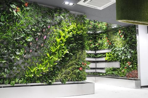 重庆仿真绿植,重庆图拉园林景观工程供应实惠的植物墙
