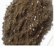 泉州烟草育苗-玻璃智能温室大棚当选黑土农科