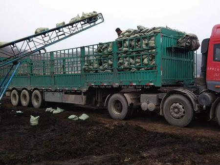 哈爾濱袋裝泥炭土哪家好_規模大的袋裝泥炭生產商_魏奇草炭土