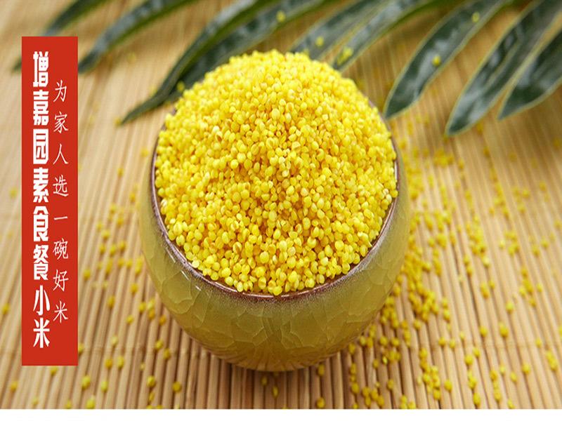 素食餐小米专卖店,实惠的素食餐增嘉园有机农业供应