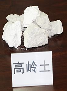 双鸭山高岭土价格-丹东优质的高岭土生产厂家