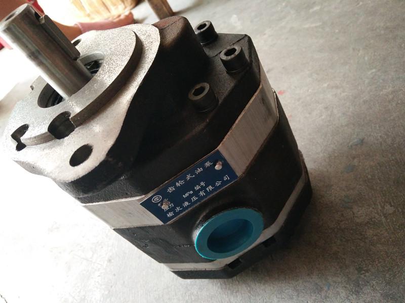 CBT-F318齿轮泵-西安哪里有供应优良的液压齿轮泵