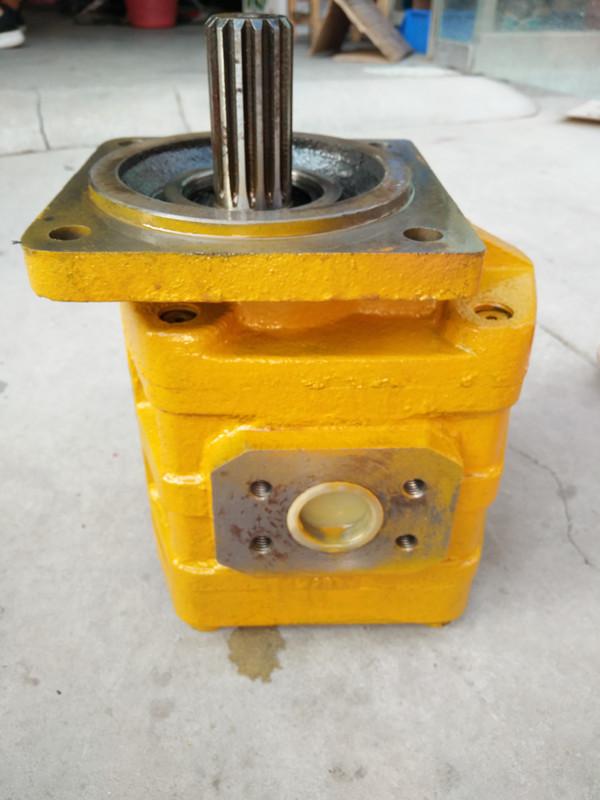 CBN-E320齿轮泵-陕西知名的液压齿轮泵供应商是哪家
