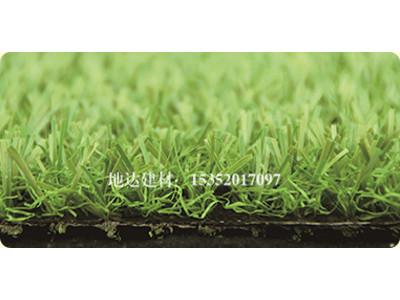西宁人造草坪|兰州哪里有供应价位合理的人造草坪