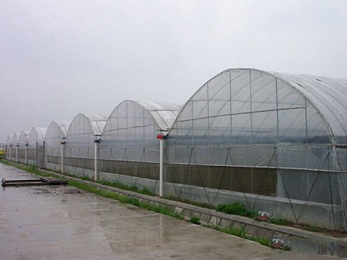 阳光板温室建造-山东专业的温室工程