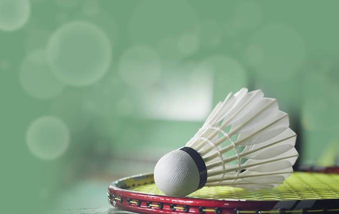 雪燕体育用品供应羽毛球塑料羽毛球羽毛球厂家