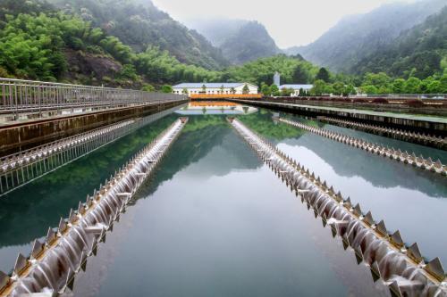 品牌好的自来水厂提质增量推荐_海南自来水厂提质增量