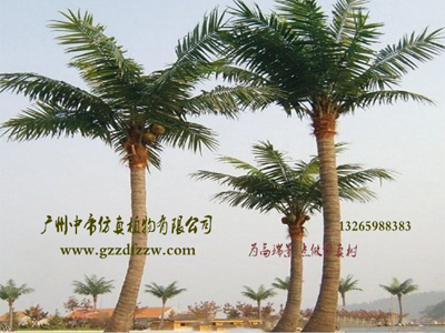 广州市中帝仿真景观工程_上等仿真椰子树供应商 仿真植物