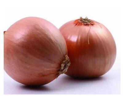 促銷黃皮洋蔥種子|四川黃皮洋蔥種子批發價格