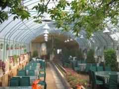 江苏生态餐厅制造专家|生态餐厅低价批发