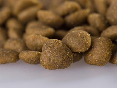 衡水宠物零食-物超所值的狗粮供应