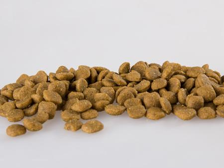 衡水狗粮批发-划算的狗粮供销