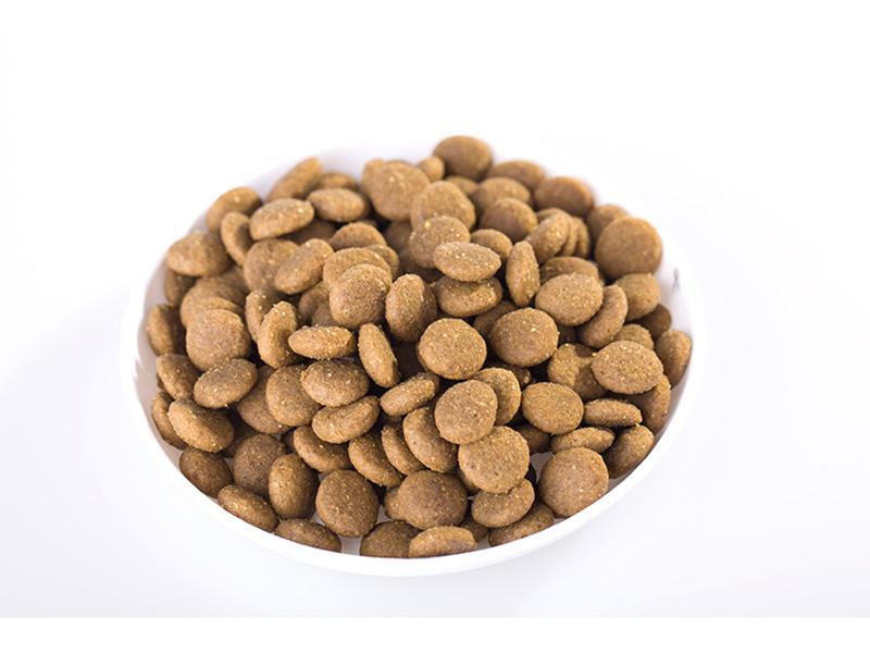 海南狗粮专卖|供应临沂物超所值的宠物食品