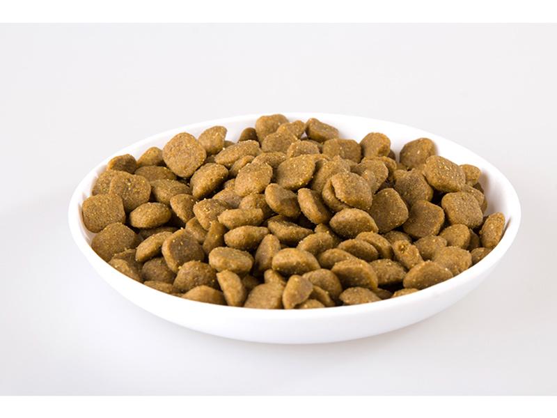 菏澤狗糧代工-物超所值的狗糧-山東帥克寵物用品供應