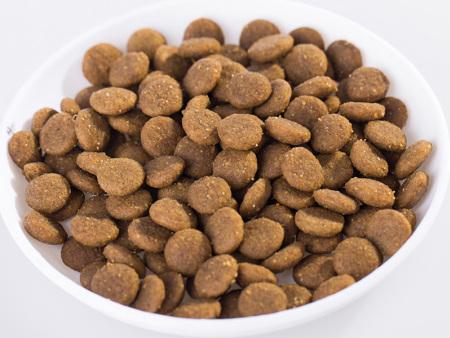 莱芜猫粮厂家-价格优惠的猫粮推荐
