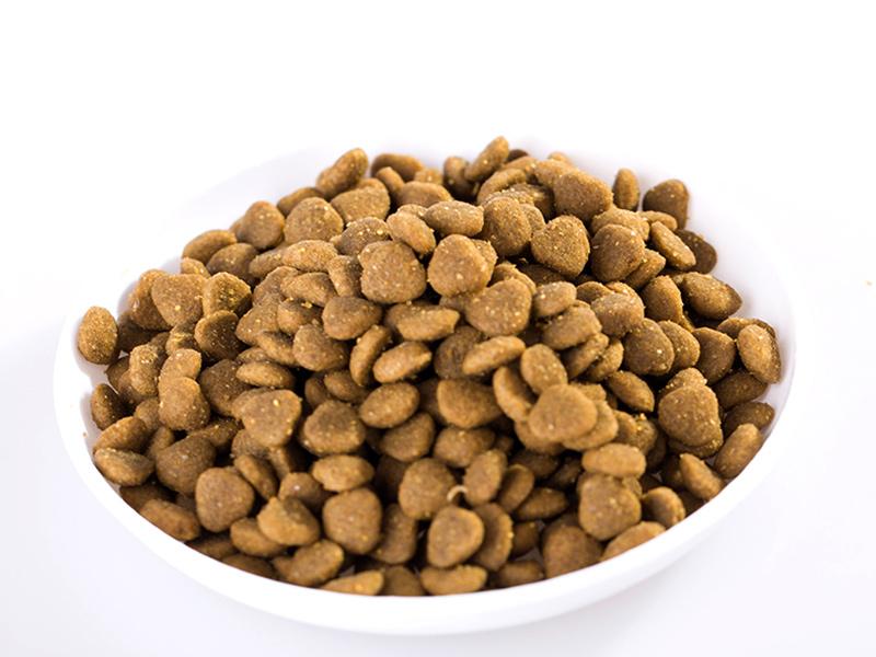 天津狗糧批發-采購高性價狗糧就找山東帥克寵物用品