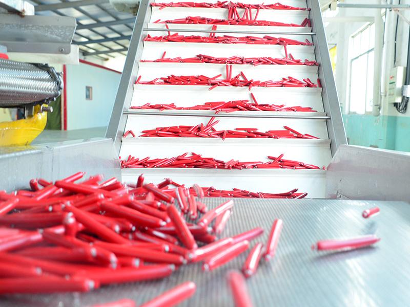 四川寵物食品廠家-臨沂哪里有供應口碑好的寵物火腿腸