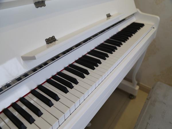 费县哆来咪琴行租赁|要买新品临沂钢琴,当选维也纳琴行