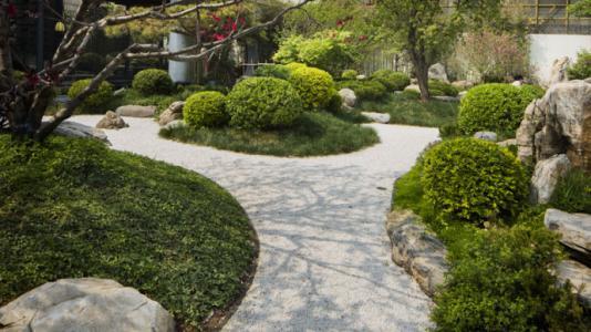 金都园林绿化专业提供园林绿化与景观设计  北京金都园林绿化有限图片