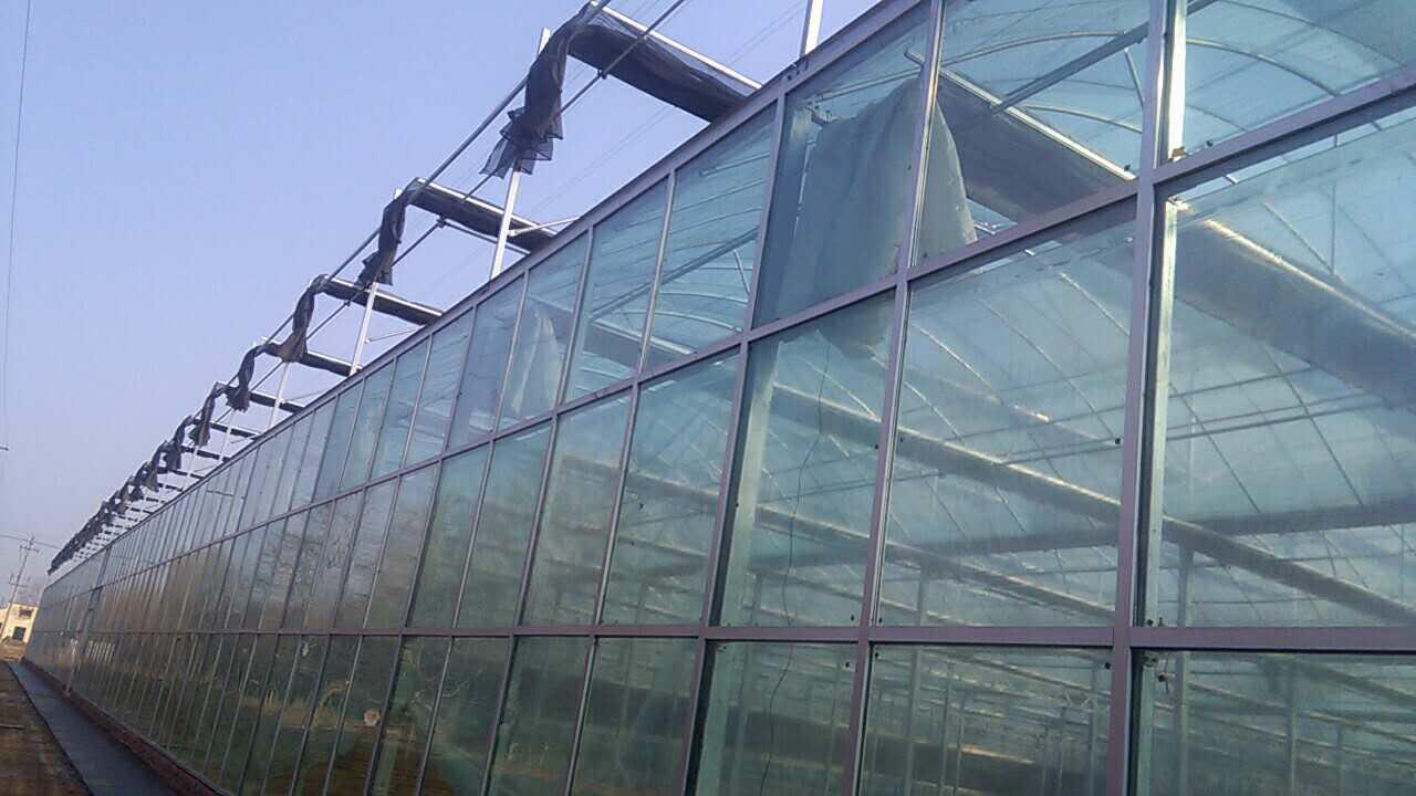 【来看看】日光温室 /全钢架温室哪家好/全钢架温室哪里有