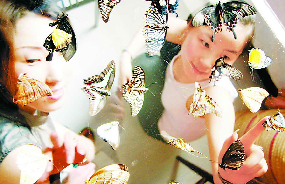 知名的蝴蝶展览公司——高峰展览,北京蝴蝶展