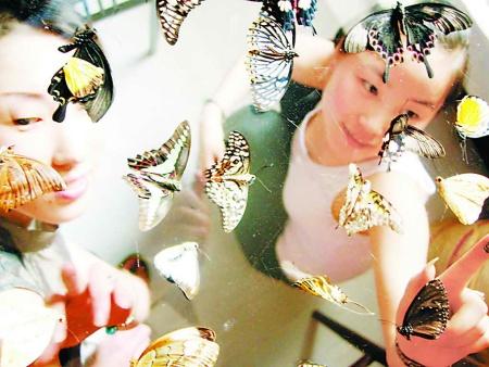 中国蝴蝶展|想找有创意的蝴蝶展览,就来九游会信誉网站展览