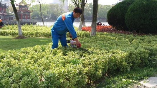 北京金都园林绿化养护包您满意――园林景观