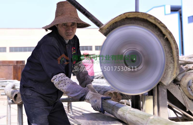 想买优良的竹木地板上哪 广州竹子