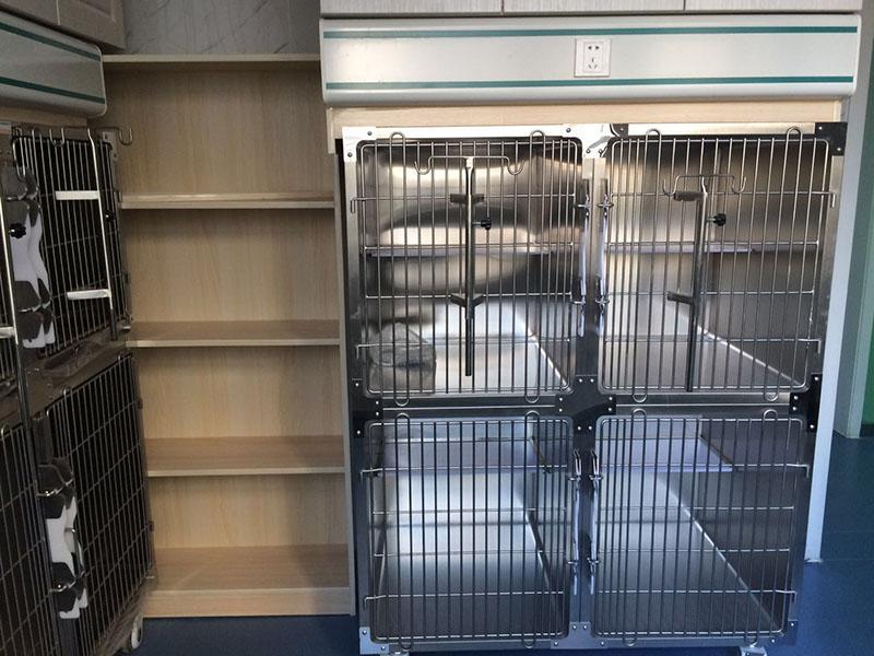 蘭州能做犬貓檢查的寵物醫院-知名的寵物醫院傾情推薦
