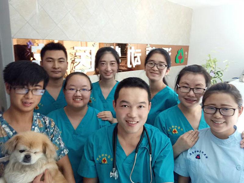 兰州七里河区宠物诊所哪家好|服务好的宠物诊所推荐