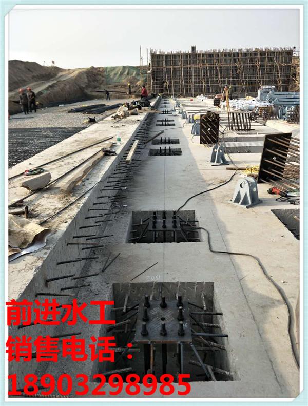 翻板钢制闸门 河北口碑好的翻板闸门供应商是哪家