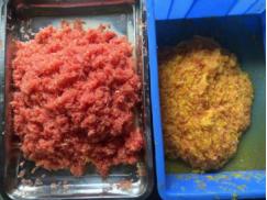 价位合理的果粒柑子分离机直销-优惠的果粒柑子分离机达桥食品设备供应