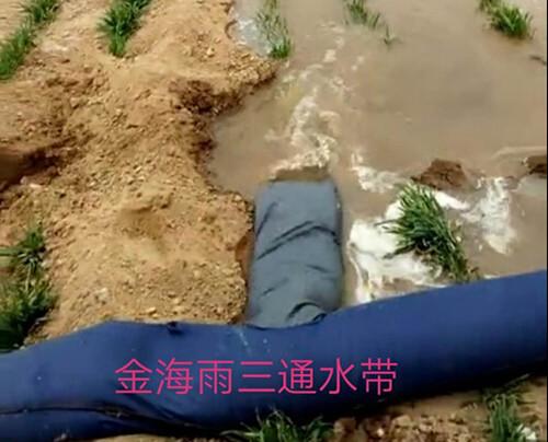 灌溉用四通水带_想买合格的布水带,就到金海雨微喷带