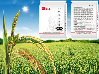 水稻增产抗倒伏硅肥&批发零售全水溶硅肥厂家@果品抗病虫害硅肥